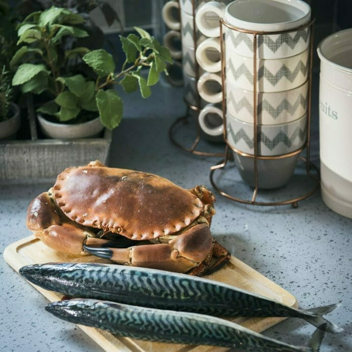 Fishermans Cottage St Ives Accessories Camellia Interiors